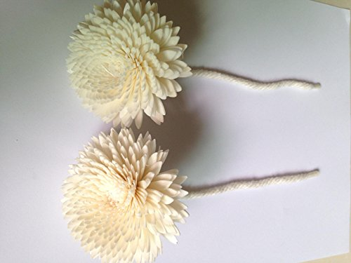 Flower Diffuser Jasmine White Balsa Sola Wood and mix 7cm Dia. with cotton rope. by Namo Aroma (Image #2)