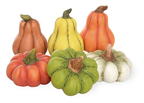 Pumpkins And Gourds - Boston International Pumpkin Patch Mini Gourds, Set of 6, Pumpkins & Gourds