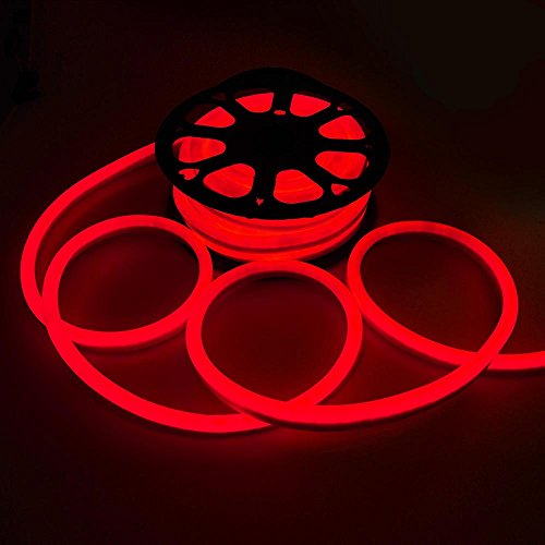 Red Led Neon Lights in US - 8