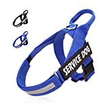 Noyal No Pull Dog Harness Service Dog Vest with Easy Control Handle and Hook and Adjustable Loop Straps,Front Reflective Patch and Back Leash Attachment(Available in 5 Sizes from S to XXL) Review