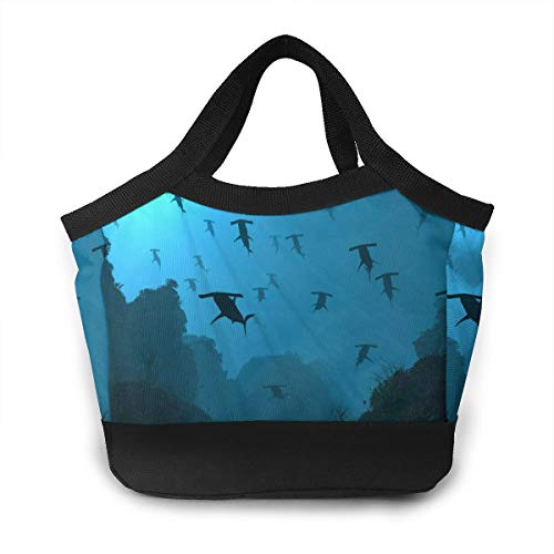 - Lunch Box Gourmet Tote Pouch Container for Women Men Boys Girls Adult School Work Picnic Hiking Beach, Leakproof Moisture Resistant Lunch Organizer, Ocean Sea Blue Hammerhead Sharks