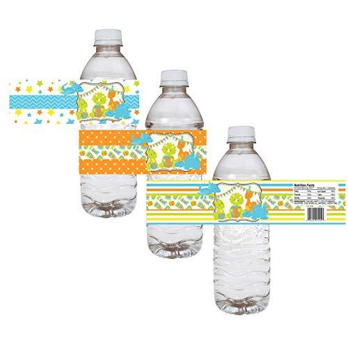 Dinosaur Party Water Bottle Labels - Children Boy