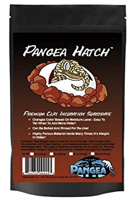 Pangea Hatch Premium Reptile Egg Incubation Substrate by Pangea