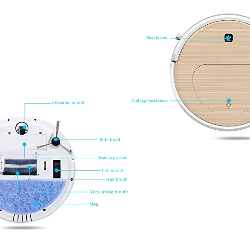 FENGRUI FR-6S Robot Vacuum Cleaner and Mop Powerful Suction Remote Control HEPA Filter for Pets Dog Hair Hardwood Floor Surfaces Home Gold by FENGRUI (Image #2)