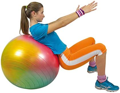 Gymnic Arte Plus Burst-Resistant Exercise Ball 55 cm