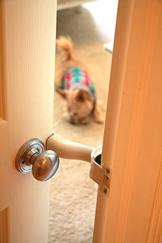 Latch 39 nvent pet access control interior door prop dog - Interior door with pet door installed ...