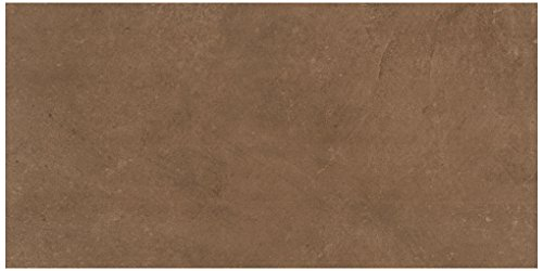 Cotto Tile Flooring (Dal-Tile 6241P1-PF10 Portfolio Tile, 12