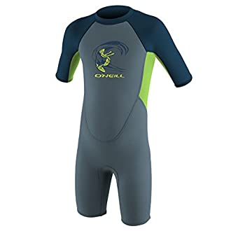 O'Neill Toddler Reactor-2 2mm Back Zip Short Sleeve Spring Wetsuit, Blue/Dayglow/Slate, 4