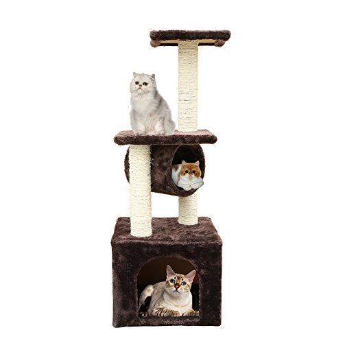 with Cat Trees design