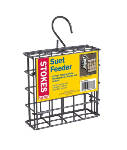 Stokes Select Suet Bird Feeder, One Suet Capacity