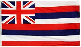 product image for 3x5' Hawaii 2ply Polyester State Flag