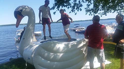 Amazon.com: Cisne gigante, inflable para piscina de verano ...
