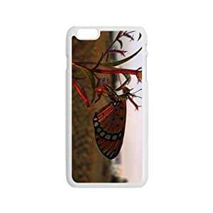 Colorful Butterfly Hight Quality Plastic Case for Iphone 6
