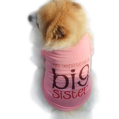 Outtop Pet Clothes [Big Sister] Small Dogs Ghost Coat Shirt Apparel Costume Accessory for Dog Dachshund, Poodle, Pug, Chihuahua, Shih Tzu, Yorkshire Terriers, Papillon (M, Pink)