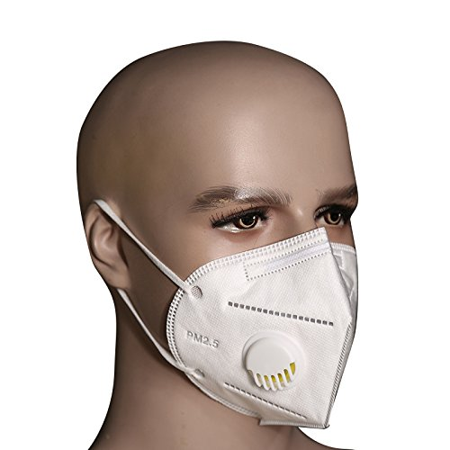 Bllomsem 5pcs Flu Face Masks with earloops Anti Virus and PM2.5 Protection with Thick Medical Grade 100% Cotton Non-woven Fabrics Design White