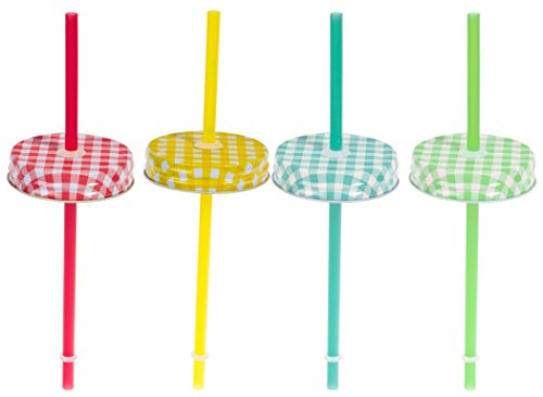 Set of Four (4) Regular Mouth Mason Jar Straw Lids with Straws (Gingham)