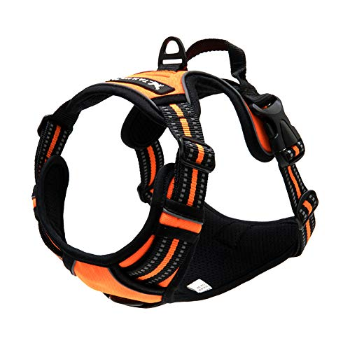 TAIL UP Dog Harness - Adjustable No-Pull Reflective Pet Harness Mesh Vest, Easy On/Off Mesh Harness Small Medium Large Dogs - Easy Control in Walking Hiking Training Medium Orange -