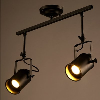 dingming 2 Light Double Spotlight Close to Ceiling Fixture