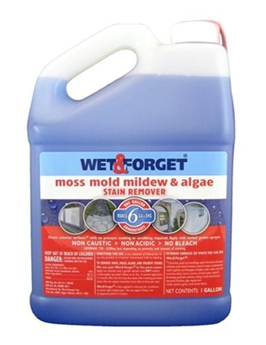 Wet and Forget 10587 1 Gallon Moss, Mold and Mildew Stain Remover (Forget Cleaner Spray)