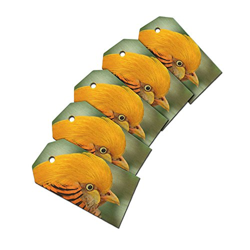 Exotic Golden Pheasant Wooden Wood Gift Tag Set