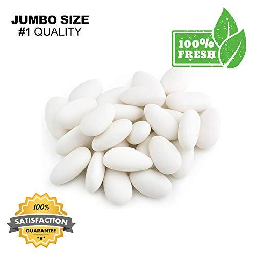 (Jordan Almonds White, Fresh Premium White Jordan Almonds Candy - European Nuts (1 lb Resealable Bag Crunchy Jordan Almonds))