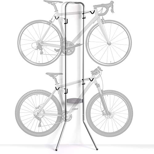 Delta Cycle & Home Michelangelo Two-Bike Gravity