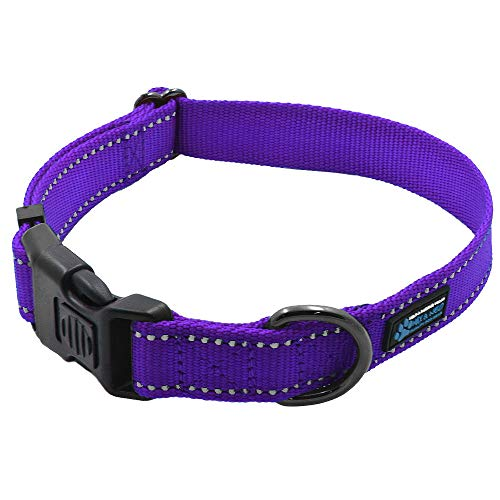 Max and Neo&Trade; NEO Nylon Buckle Reflective Dog Collar - We Donate a Collar to a Dog Rescue for Every Collar Sold (Medium, Purple)