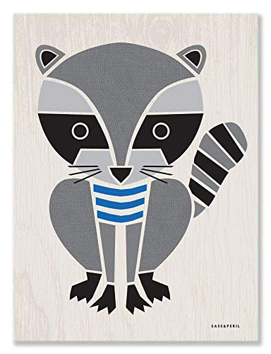 (Oopsy Daisy Canvas Wall Art Modern Animals Raccoon by Sass and Peril, 18 by 24-Inch)