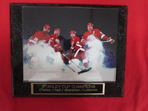 Detroit Red Wings 2002 Stanley Cup Champions Collector Plaque w/8x10 ACTION Photo