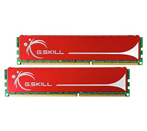 (G.SKILL F3-10666CL9D-4GBNQ PC3-10666 4GB 2X2GB DDR3-1333 CL9-9-9-24 240PIN Dual Channel Memory Kit)
