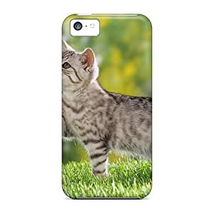 Series Skin Cases Covers For Iphone 5c(british Shorthair Kitten)