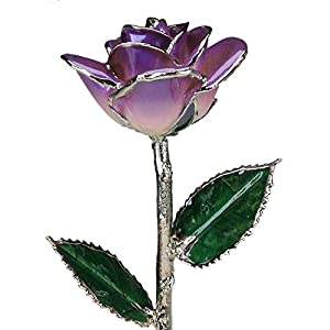 Living Gold Two-Tone Purple Laquered Platinum Dipped Long Stem Genuine Rose in Gift Box 10