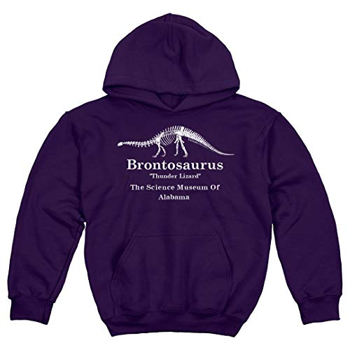 FunnyShirts.org Retro Brontosaurus Stranger Alabama: Youth Hoodie Sweatshirt Purple
