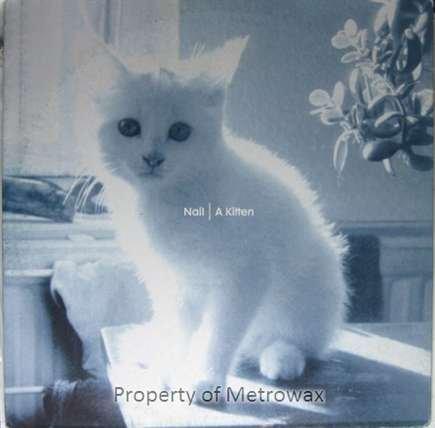 A shopping Kitten VINYL 12