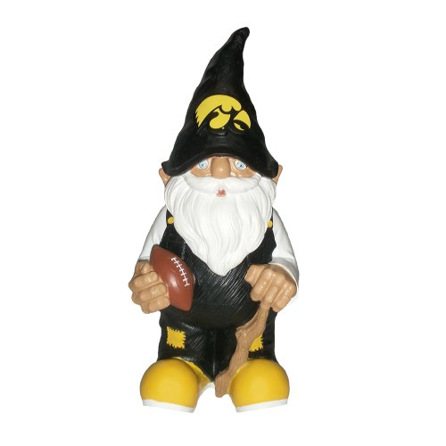 Iowa 2008 Team Gnome
