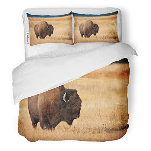 Semtomn Decor Duvet Cover Set Twin Size Buffalo Bison During Fall Wild America Fur North Animal 3 Piece Brushed Microfiber Fabric Print Bedding Set Cover ()