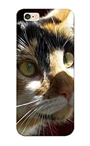 Snap-on Cat In The Morning Case Cover Skin Series Compatible With Iphone 6 Plus