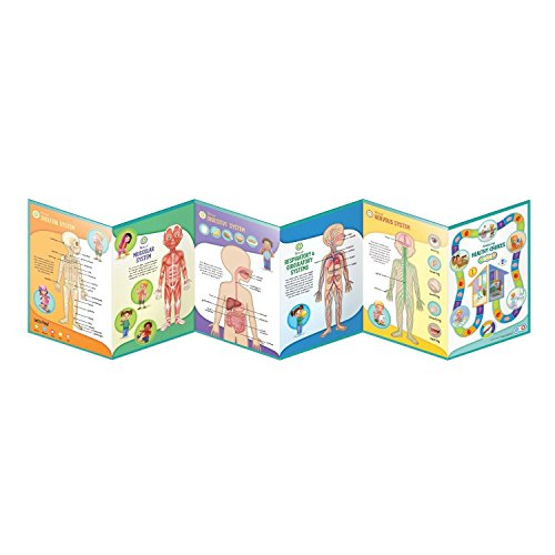 LeapFrog LeapReader Interactive Human Body Discovery Set (works with Tag) by LeapFrog (Image #10)