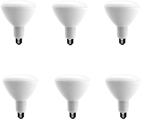 3-Pack EcoSmart 75W Equivalent Daylight BR40 Dimmable LED Light Bulb
