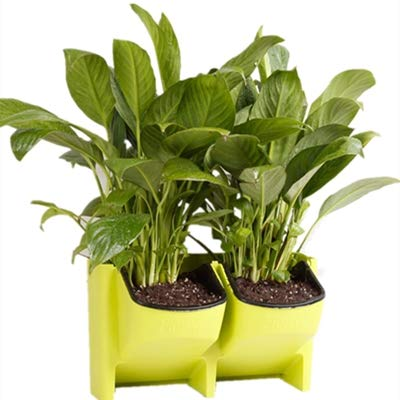 Adeeing 2 Pocket Vertical Gardening Limited Space Stackable Planters For  Indoor Outdoor Decoration Or Growing