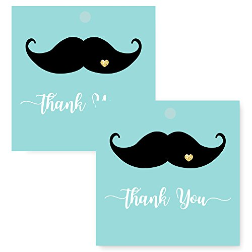 Mustache Gift Tags (Mustache Favor Tag Set of 25 Black and Mint)