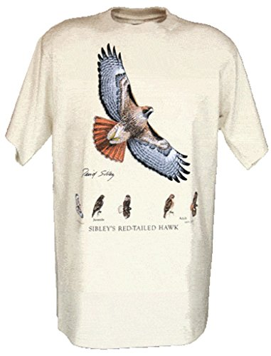 Tom's Bird Feeders Sibley's Red-Tailed Hawk Adult t-Shirt Size Medium