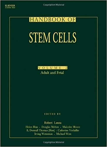 embryonic and stem Difference adult cell between