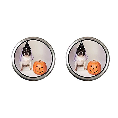 GiftJewelryShop Silver Plated bulldog witch costume Halloween pumpkin Photo Stud Earrings 10mm (Clip On Dog Ears Costume)