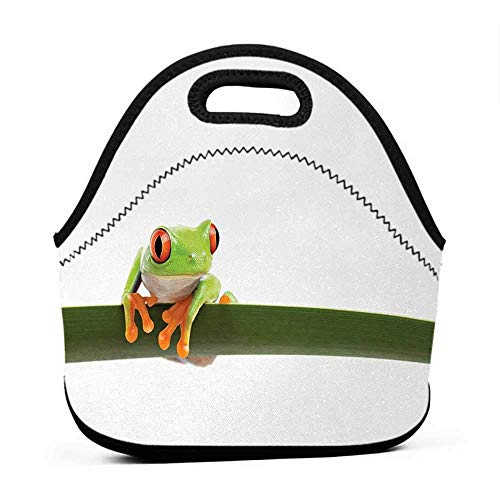 Travel Case Lunchbox with Zip Animal,Red Eyed Tree Frog Perches on a Long Slim Leaf Tropic Rainforest Animal Wild Life,Green White,brown bag for lunch