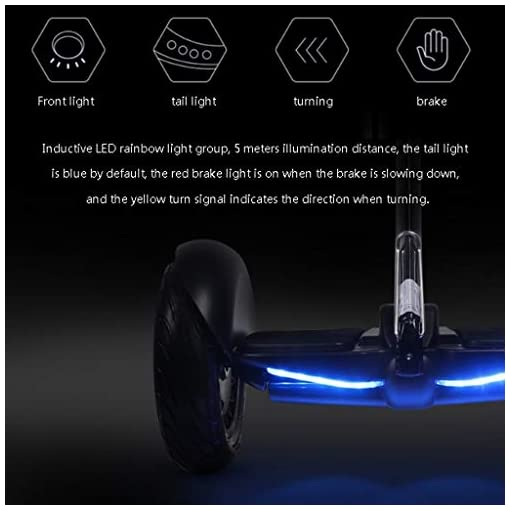 HUO FEI NIAO Hoverboard, 10 Pouces Auto équilibrage Hoverboards, APP contrôle Intelligent, Roue Halo, Hover Board for Adultes Enfants (Noir)