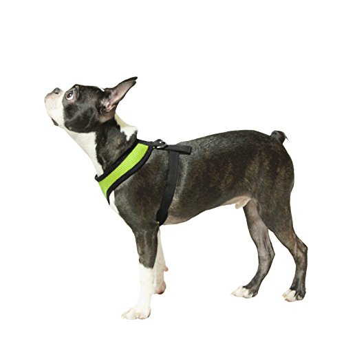 Picture of Gooby Soft Mesh Harness for Small Dogs, Medium, Green