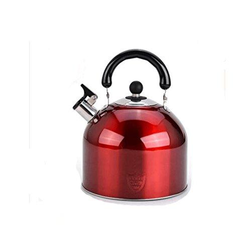 Bouilloire GAODUZI 304 INOX Épais Gaz Ménage Sifflet Plat Multi-Couche Bottom Induction Cuisinière 4L5L6L (Capacité : 4L)