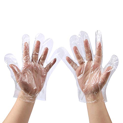 Disposable Food Prep Gloves Transparent