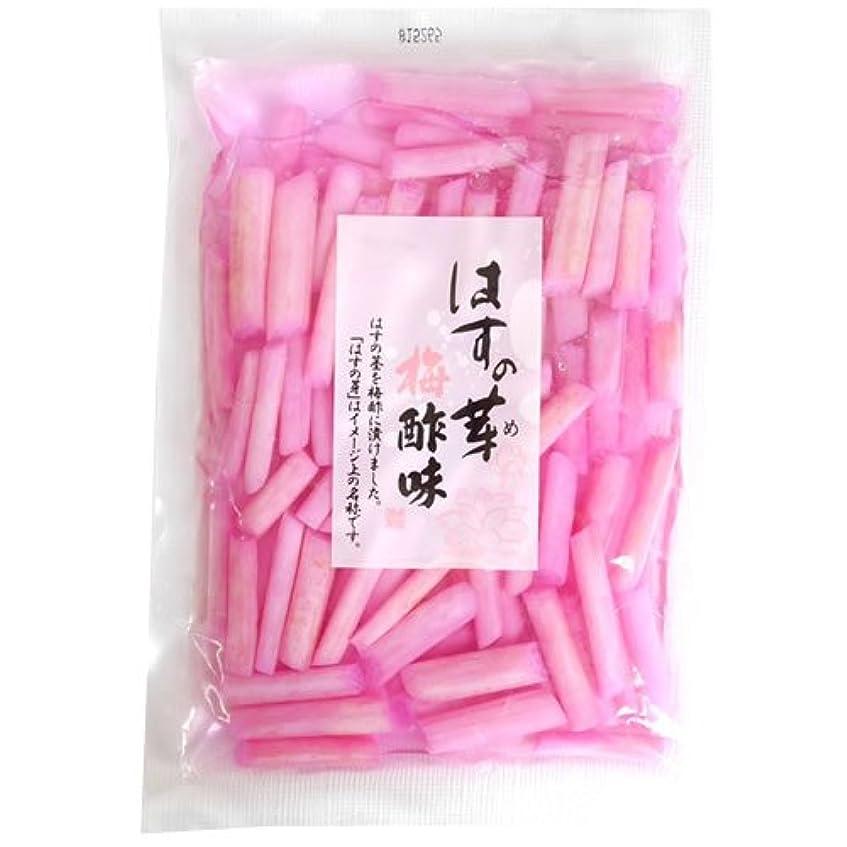 創造臭いそれぞれ刻みすぐき漬け 130g袋入り (大森屋 京漬物)